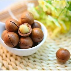 Macadamiaöl, kaltgepresst