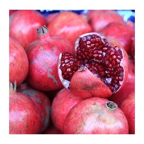Granatapfelsamenöl - 30 ml