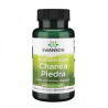 Chanca Piedra 500 mg 60 Vega Kapseln
